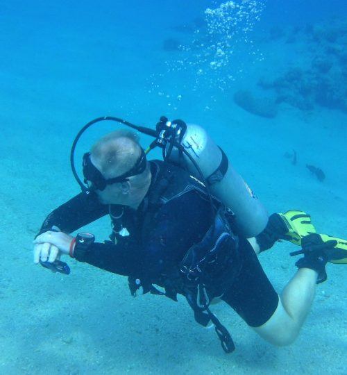 diver-1881751_1920